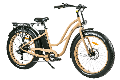 Fat bike assistance électrique